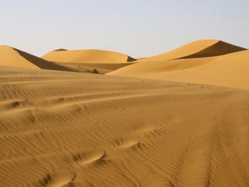 Two nights in the Desert Sahara Dunes