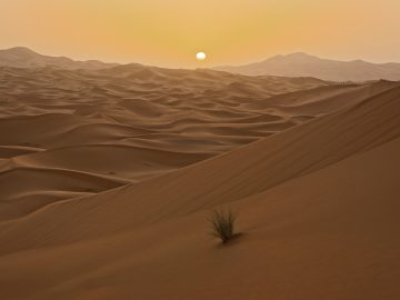 This two nights in the Desert,days from marrakech to desert,Desert Morocco, night in Desert