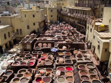 Days Tour from Fes to Marrakech,Best Things To Do in Fez