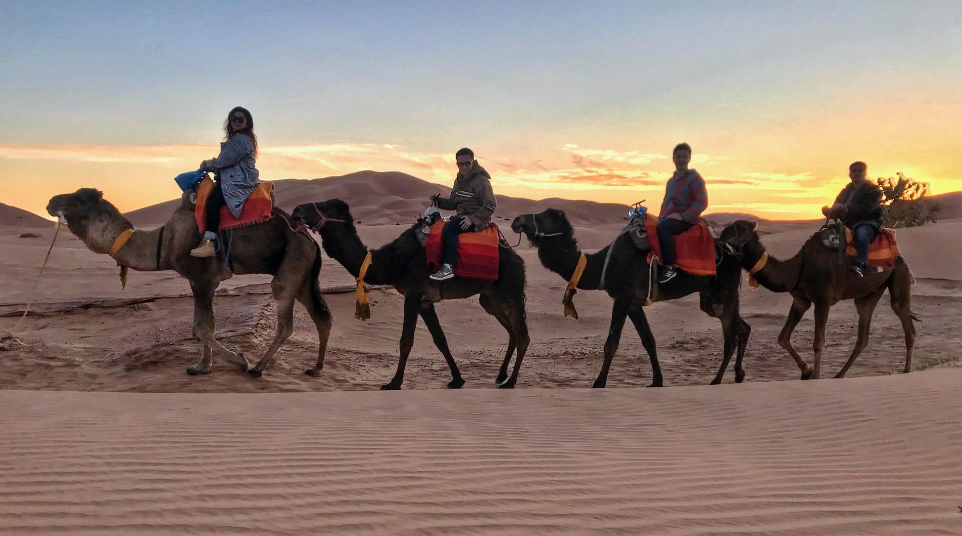 night Desert Camp,camel trekking,Night in Bivouac Desert Sahara: Merzouga - Erg Chebbi