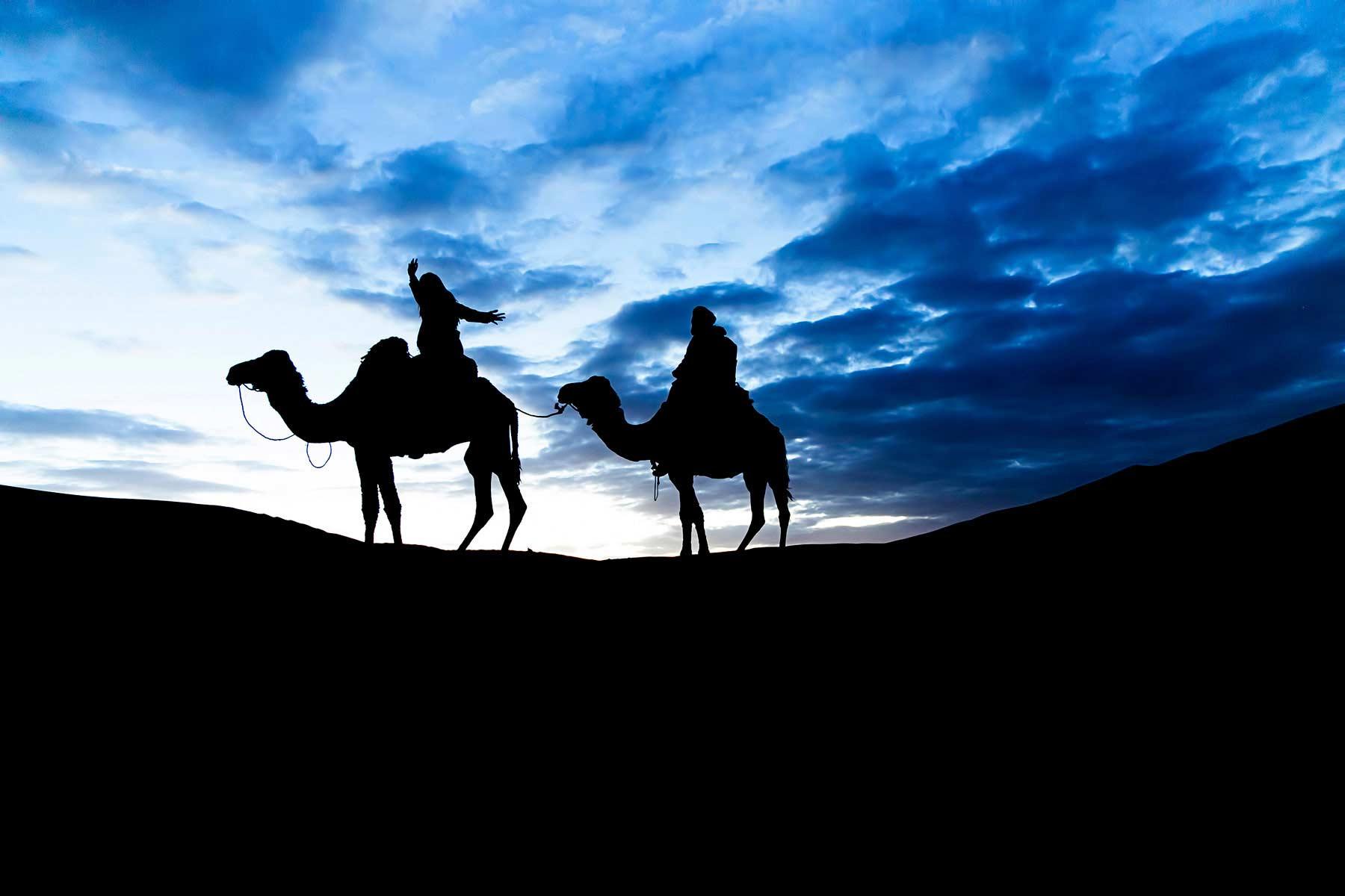 Camel Trekking in the Moroccan Sahara at night