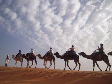 travel agency Marrakech Desert Morocco,3 days from marrakech to desert