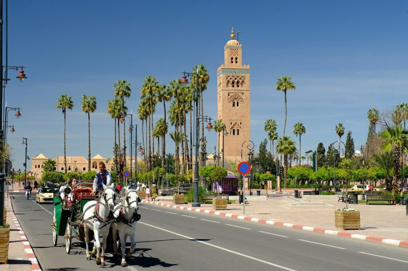travel to morocco; Marrakech,Best Things To Do in Marrakech